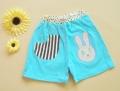 Nissen Little Bunny Blue Short Pant 条纹小兔短裤蓝色
